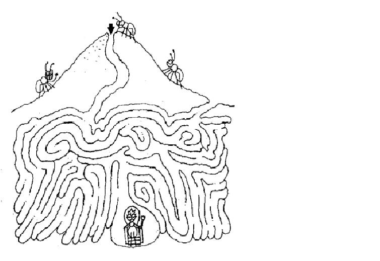ant hill coloring page maze sketch coloring page