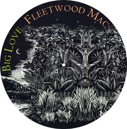 Fleetwood mac picture disc big love ext version you and i